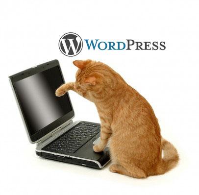 Как сделать сайт на wordpress оффлайн